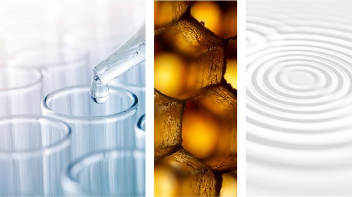 Illustration Principe : Biomimetizmus által vezérelve